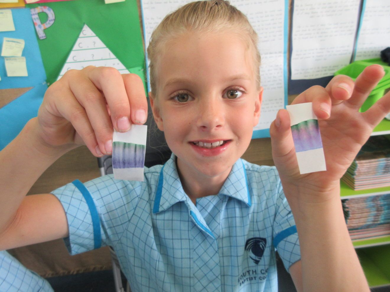 YEAR 3 SCITECH INCURSION